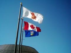 Anglų lietuvių žodynas. Žodis flag reiškia I 1. n 1) plokštė; 2) keturkampis akmuo; 2. v grįsti plokštėmis II v 1) nukarti, nusvirti; 2) susilpnėti, sumažėti (apie jėgą, entuziazmą). III 1. n vėliava; 2. v signalizuoti vėliavėle lietuviškai.