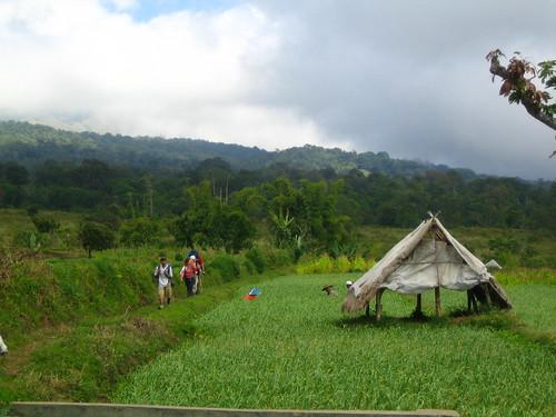 Gunung Rinjani 06
