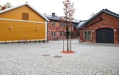 Fin_05_Turku_090_m1_screen (pntphoto) Tags: urban tree brick nature yellow suomi finland turku urbannature walls scandinavia scandinavian pavel trebukov pntphoto