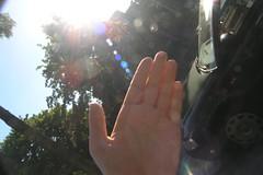 DRIES TRIEST'S HAND (piet g) Tags: hand stop halt panasonicfz30 stopthecar pietg