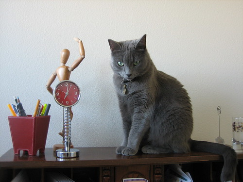 Qubit poses on my writing desk