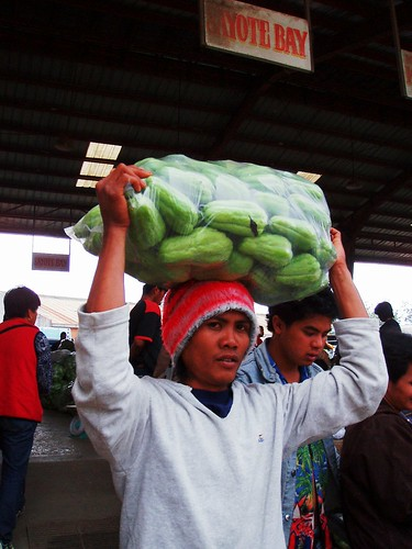 philippines,filipino,pinoy,sayote young man carrying head chokoes sayote vegetable looking