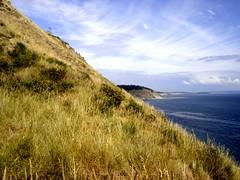 Oceanview (Buford Blue) Tags: ocean blue sea grass landscape island coast washington pacific meadow slope shoeline whigbey whigbeyisland