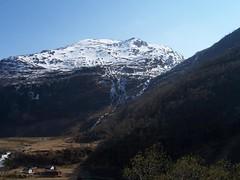 Flåmsbana Impression V (Sogn og Fjordane, Norway) (Loeffle) Tags: norway train norge norwegen railway zug flåmsbana tog noreg sognogfjordane 052006