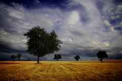 OVERCOME ME - by kwerfeldein