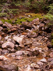 CIMG4759 (Peter Chow) Tags: canada alberta banff canadianrockies lakemoraine