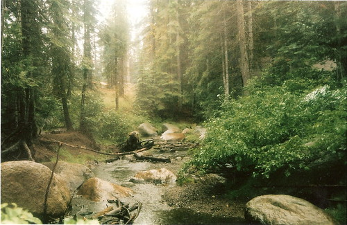 the creek at Camp
