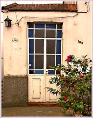 DSC03354 (drear2ta) Tags: door roses urban argentina buenosaires doorway porte portal rosas puertas flres