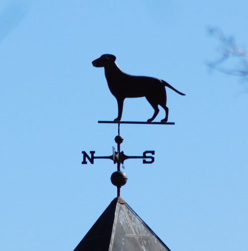 dog weathervane