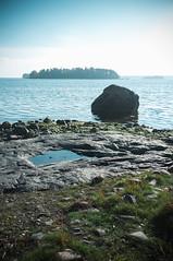 Evsretki (timoppi) Tags: nature finland helsinki outdoor balticsea syksy vuosaari kallahti ulkoilu
