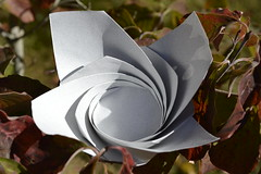 Rose Bowl (oschene) Tags: rose origami toshikazukawasaki developable curvedsurface