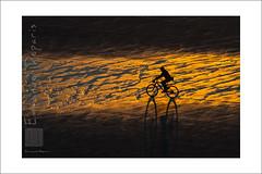 sunset beach bycicle (Emmanuel DEPARIS) Tags: mer beach de sand nikon sable cote 500 pas plage f4 emmanuel calais manche d4 boulognesurmer dopale deparis