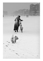 Fred n Sue (Jo Teasdale) Tags: street winter people urban snow dogs monochrome landscape brighton hove streetphotography bwartaward landscapephotographeroftheyear livingtheview