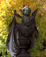 "Cincinnati – Spring Grove Cemetery & Arboretum ""Under Angel Cover"" (David Paul Ohmer) Tags: angel ohio cincinnati spring grove cemetery arboretum springgrovecemetery gravesites burial grounds death spirit soul deceased graveyard conservatory victorian gothic revival national historic landmark adolph strauch cemetary autumn fall foliage seasons color leaf leaves leaflet"