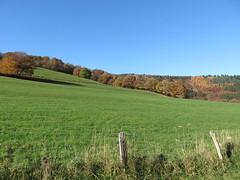 IMG_9149 (Bike and hiker) Tags: nationalpark herbst herfst eifel obersee rur rurberg einruhr urft rureifel urfttalsperre