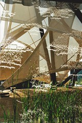 drops of rain (omnia_mutantur) Tags: italy plants milan rain arquitetura architecture lluvia arquitectura plantas italia expo milano chuva sails pluie pavilion kuwait piante pioggia architettura italie pavillion plantes pavilho vele padiglione voiles velamen expo2015  expomilano expomilan pabllon
