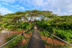 Parque Nacional Nairbi (dragoms) Tags: africa river kenya wildlife nairobi nairobipark qunia dragoms