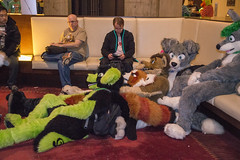 DSC_0036 (Acrufox) Tags: chicago illinois furry midwest december ohare rosemont convention hyatt regency 2014 fursuit furfest fursuiting acrufox mff2014