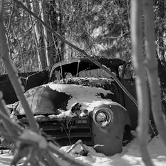 Truck in the Woods (bac1967) Tags: old trees 2 bw white lake snow black mountains tree 120 tlr film coffee truck river blackwhite washington highway fuji hwy explore wa fujifilm neopan 100 wenatchee 35 cascade developed mx development mts ch automat mtns develop acros caffenol explored roleiflex rsinstant