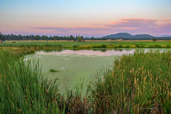 (Jessica 636) Tags: sunset nature river golf landscape greenery