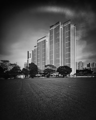 Arc (Scintt) Tags: singapore black white mono monochrome desaturated bnw bw urban architecture modern skyscraper building skyline cityscape city tall hdb housing apartments homes public estate contrast large format film silver 4x5 58mm super angulon schneider gaoersi sheet grass lines vignette wide angle dramatic tones epic scintillation scintt jon chiang photography light glow grain trees nature natural