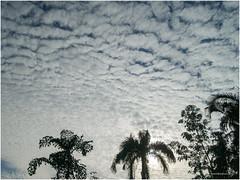 sky 8.12.16 (b. inxee) Tags: chiangmai cloud sky