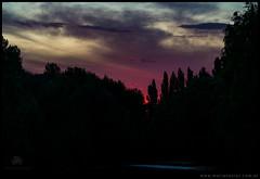Crepusculo en el rio Negro