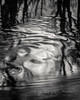 Winter Flow (dave.thediver) Tags: longexposure bw black cumbria contrast dark distortion flow lines movement reflection ripples river stream trees winter