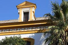 Séville (hans pohl) Tags: séville andalousie espagne fenêtres windows architecture roofs toits