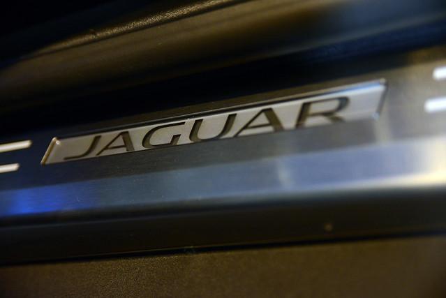 Jaguar-22(2)