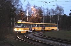 PMDP (Plzeň) tram 331 Košutka