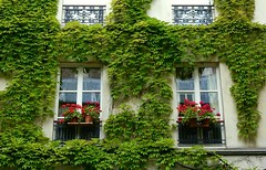 Janelas de Paris (dirceu1507) Tags: janelas windows fenetres ventanas finestra