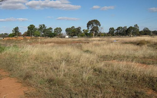 Lot 1040 Back Trundle Road, Parkes NSW 2870