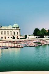 Lotus flowers by Ai Weiwei (camillakarst) Tags: aiweiwei lifejackets lotusflowers installation art 21erhaus exhibition schlossbelvedere belvedere wien vienna austria österreich