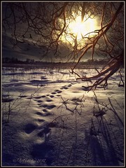 The winter's tale. (odinvadim) Tags: mytravelgram paintfx textured textures iphone editmaster travel iphoneography sunset evening iphoneonly painterly artist snapseed landscape photofx specialist iphoneart graphic painterlymobileart awardtree