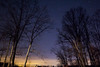 Night Time Trees (matthewkaz) Tags: night dark sky stars tree trees morehead rowancounty kentucky winter 2016