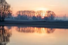 Cold Sunrise (Renate van den Boom) Tags: 12december 2016 boom europa gelderland jaar landschap maand natuur nederland oosterhout renatevandenboom seizoenen uiterwaarden winter zon zonsopkomst