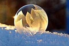 Anglų lietuvių žodynas. Žodis soap-bubble reiškia n muilo burbulas (t. p. prk.) lietuviškai.