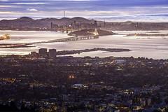 Bay Bridge and San Francisco (Tony Shi Photos) Tags: grizzlypeak berkeleyhills berkeley ca oakland california sanfrancisco sf bayarea baybridge tildenregionalpark universityofcalifornia ucberkeley grizzlypeakboulevard yerbabuenaisland treasureisland skyline buildings cityscape