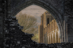 Through an Arch Brightly (JDWCurtis) Tags: llanthony priory ruins ruin sun sunlight frame framed building buildings religion religioushouse christianity christian golden soft arch wales southwales placeofworship arches brick wall walls historicalmonument historicalruins history