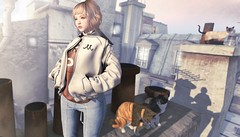 721 (Tomomi alpaca Homewood) Tags: mbirdie tram 6doo kiiko bentohead milkmotion rooftop cat