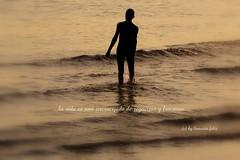 ...la vida es una encrucijada de regocijos y fracasos.(Benedetti) (lameato feliz) Tags: poema benedetti