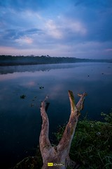 Rapti Blues (Udhabkc) Tags: ifttt udhabkc udhab 500px river water clouds reflection travel light sunrise sky blue beach trees landscapes beautiful summer nepal rapti morning nikkorgrapher nikon nikkorgraphy nikkor nikond700 iamnikon iamnikkorgrapher iamnikond700 kathmandu view peaceful bliss