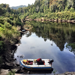Franklin River. Tasmania.