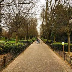 Dando uma volta neste jardim de Pádua, que existe desde os tempos do império romano! 🌳🚲 (jpcamolez) Tags: dando uma volta neste jardim de pádua que existe desde os tempos do império romano 🌳🚲