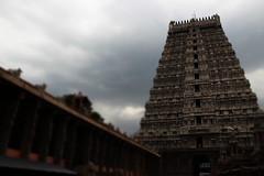 Walkpath (Ajay Brooks) Tags: sunset green beach clouds temple gopuram thiruvannamalai greenary mandapam