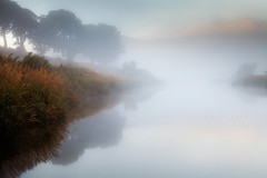 It's beginning to look a lot like Autumn (Stuart Stevenson) Tags: uk autumn trees light mist fog sunrise river photography scotland riverclyde countryside scottish valley riverbank clydevalley southernuplands tintohill stuartstevenson appicoftheweek scotlandmuted