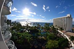 Westin Maui - Fisheye (iamshaft3) Tags: travel beach island hawaii honeymoon courtyard maui fisheye oasis westin overall