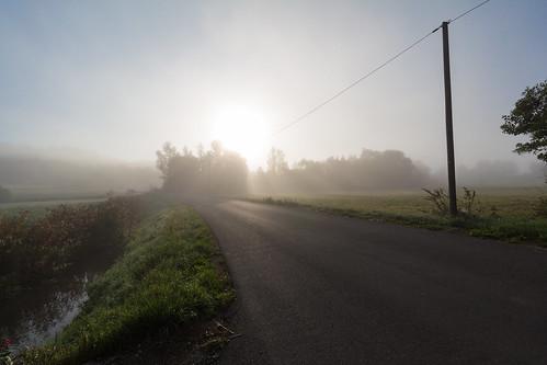 Der Nebel am Morgen 3