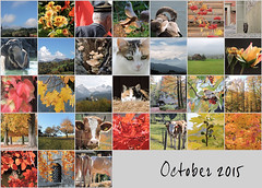 October 2015 Mosaic (keepps) Tags: photomosaic month bighugelabs